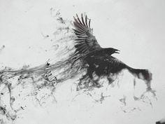 avaen & the raven queen