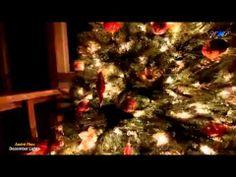 ▶ André Rieu - December Lights - YouTube