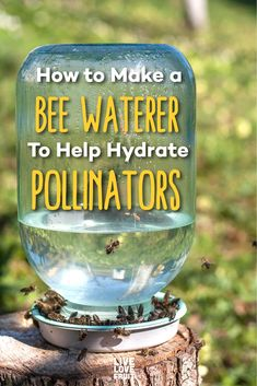 Not many people are aware that bees drink water. They also need water to keep their hive cool and humid. Here's how to make a bee waterer for your garden. Water For Bees, Bee Facts, Bee Hive Plans, Bee House, Backyard Beekeeping, Bee Friendly, Save The Bees, Bee Happy, Bees Knees