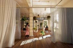 "translucent curtain dividers and a porous ""jungle gym""(vertical garden) :: Blu Creativity 