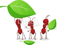 Three Ants working and carrying leafs to the anthill Royalty Free Stock Vector Art Illustration