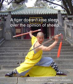 http://www.holmesproduction.co.uk  A tiger doesn't lose sleep over the opinion of sheep.