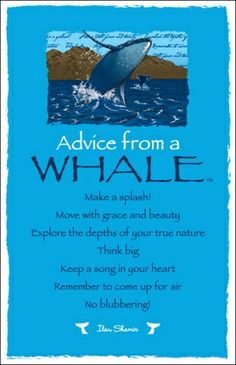 Advice from a whale