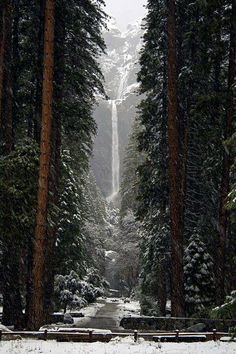 Yosemite. Looks like one place I might want to go in the winter <3