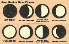 Oreo cookie moon phases fun!