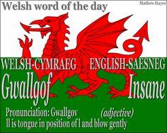 #Welsh Word of the Day: Gwallgof/ #Insane
