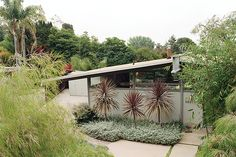 """Architect <a href=""""http://www.dwell.com/design-source/org/cory-buckner-architect"""">Cory Buckner</a> has become Los Angeles' resident <a href=""""http://www.dwell.com/people/quincy-jones"""">A. Quincy Jones</a> expert. Here, she shares tips on how to complement iconic modern architecture with water-saving tricks."""