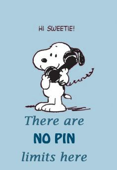 Snoopy says, no pin limits here!