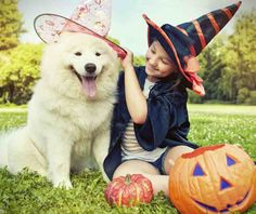 How to Protect Your #Children, Property, and Pets on #Halloween