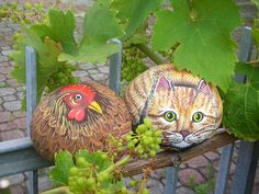 Painted rocks! Chicken and cat - not likely to be buddies in real life!