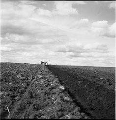 """""""Mar del Plata 1940s -1960s II""""  Ph: Annemarie Heinrich - Heinrich Sanguinetti Archive - British Library"""