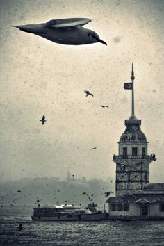 İstanbul Pictures