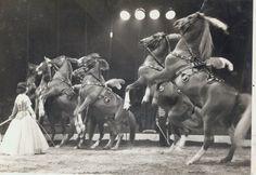 Bertram Mills Circus Liberty Horses presented by Nadia Houcke