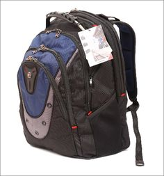 Swiss Gear Ibex 17-Inch Notebook Backpack ($68) I LOVE this backpack for lugging my work laptop around!