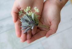 Boutonnière de mariage succulentes - plantes grasses deux ton et Sprays vert marié boutonnière
