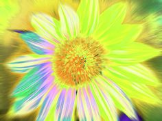 Sunflowers Art Print featuring the photograph Sunluminary by Cris Fulton
