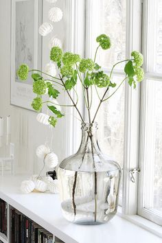 bright green flowers in white window sill, pantone greenery, lime green, spring green, apple green, bright green