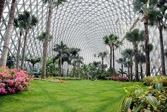gorgeous shanghai chen shan botanical garden