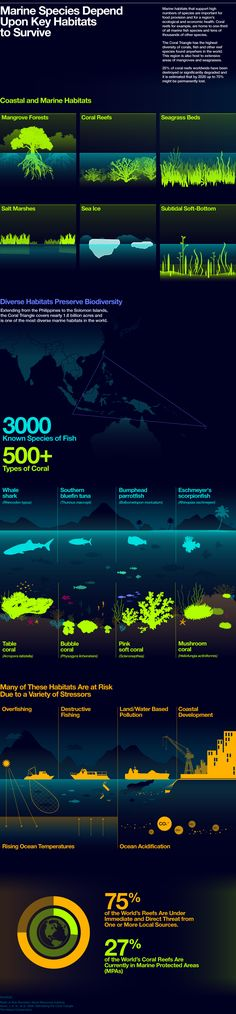 Florida has alll these habitats - except the ice of course- that need protection! from The Coral Triangle