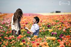 Fairy Tale Proposal Photography Ideas