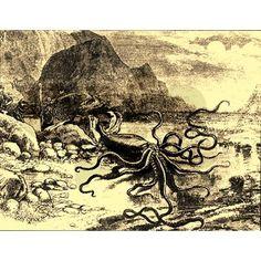Retro Ocean Stories Kraken Shower Curtain on CafePress.com