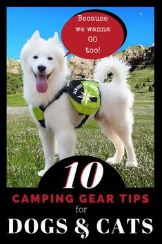 113 Best Rv Accessories Camping Gadgets Apps And Other Travel