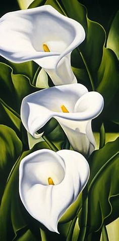 Catherine Abe. Fantastic!  Purity of White! Lily Painting, One Stroke Painting, Fabric Painting, Painting & Drawing, Watercolor Flowers, Watercolor Paintings, Art Deco Paintings, Art Drawings, Hintergrund Design