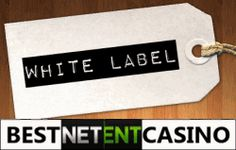 White Label casinos The online casino world is not easy at all. A fair casino may be found out there thanks to gaming providers, authority which issued the license, platform provider, payment