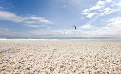 Shell Beach 8284 jpg