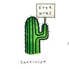 Cacti loove