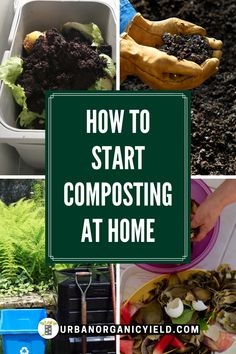Using compost for your own garden is very beneficial. We take a close look at the DIY compost making process for beginners and how long it takes to make compost. #Compost #Composting #Gardening #UrbanOrganicYield Compost Container, Container Vegetables, Organic Vegetables, Growing Vegetables, How To Start Composting, How To Make Compost, Composting At Home, Garden Compost, Vegetable Gardening
