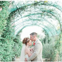 One of our favorite #WindmillWinery photo-op spots. How stunning is this couple? Photographed by @andrewjadephoto