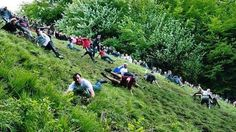 Top 7 Most Bizarre Festivals around the World Cheese Rolling. This annual festival is held at Cooper's Hill in England. The participants used to be only from the nearby village of Brockworth, but over t. Festivals Around The World, Travel Around The World, Around The Worlds, Festival List, Beer Festival, Roll Hill, World's Best Food, Cheese Rolling, United Kingdom