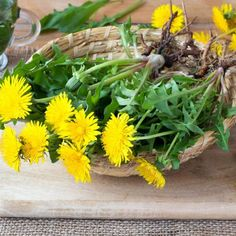 The psoas muscle is prone to getting strained. Here's what you need to do to finally get some psoas muscle pain relief (and maybe ease your anxiety, too! Dandelion Benefits, Dandelion Root Tea, Dandelion Plant, Dandelion Leaves, Dandelions, Dandelion Seeds, Heal Liver, Sources Of Dietary Fiber, Dandelion Recipes