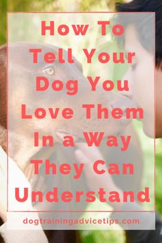 Verbal communication is the easiest way to tell someone you love them but human beings & dogs don't share the same language. Here are 8 Ways to tell your dog you love them in a way they can understand. Teach Dog Tricks, Nanny Dog, Basic Dog Training, Dog Ages, Pet Care Tips, Pet Tips, Positive Reinforcement, Dog Behavior, To Tell