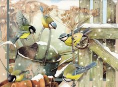 Marjolein Bastin. Chickadees in winter. Carboneros en invierno. http://perfectodia.blogspot.com.es
