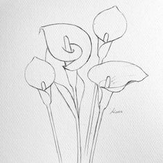 Flower Drawing Discover How to draw flowers How to draw flowers step by step for beginners Easy Flower Drawings, Flower Drawing Tutorials, Flower Sketches, Pencil Art Drawings, Art Drawings Sketches, Art Tutorials, Sketch Art, Easy Sketches To Draw, Pencil Drawings For Beginners