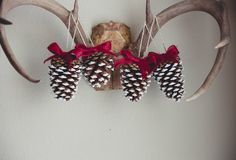 A personal favorite from my Etsy shop https://www.etsy.com/listing/257089574/christmas-pinecone-ornaments-red-ribbon