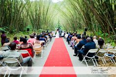 Wedding at Bamboo Cathedral, Trinidad & Tobago via Yaisa Tangwell Photography ...I ADORE this location.