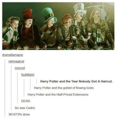 20 Funny and Magical Harry Potter Memes Found on Tumblr: 20 Funny Harry Potter Tumblr Posts