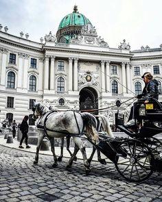 📷 👉@steffenwii👈  #wien_love Follow us 🔺    #wien #vienna #austria #österreich #travel #europe #architecture #trip #city  #vienna_city #vienna_austria Heart Of Europe, Vienna Austria, Georgian, Travel Photos, Travel Photography, Louvre, The Incredibles, Explore, Architecture