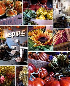 Stunning sunflowers, vibrant pumpkins, and warm tones consume our walls | Fall 2011 | Rolling Greens Los Angeles