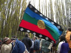 Mapuche flag First Language, Our Country, Flags, Rebel, World, National Flag, The World