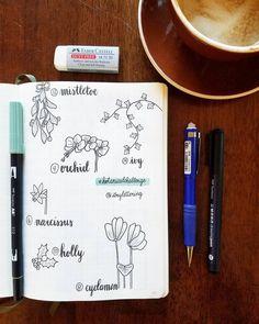 Bullet journal botanical drawing ideas, plamt drawings, flower drawings, ivy drawing, mistletoe drawing, holly drawing, orchid drawing, narcissus drawing, Cydamen drawing. @itrylettering