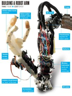 You Built What?: A Remote-Controlled Robo-Arm Build A Robot, Rc Robot, Robo Arduino, Arduino Circuit, Homemade Robot, Prosthetic Device, Robot Hand, Robotics Projects, Humanoid Robot