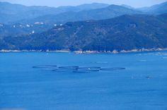 6つの輪 in Japan Ise Shima