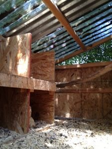 Details about this guest chicken coop featuring an open floor plan with clear panel ceiling. Read more at our blog - http://izzyfarmin.wordpress.com/2013/07/23/guest-coop/
