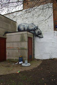 Introducing Roa Street Art | Abduzeedo Design Inspiration