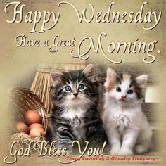 Happy Wednesday, Have A Great Morning good morning wednesday wednesday quotes happy wednesday good morning wednesday happy wednesday quotes Wednesday Greetings, Blessed Wednesday, Happy Wednesday Quotes, Good Morning Wednesday, Thursday Quotes, Wonderful Wednesday, Thankful Thursday, Good Morning Sister, Good Morning Happy