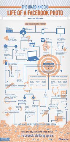 The Life of Facebook Photo  #Facebook #socialmedia #SEO  http://bluepolointeractive.com